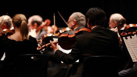 Orchestra ritratta da Ioana Sasu